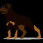 rottweiler.png