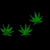 Pflanzen pflücken / Weed