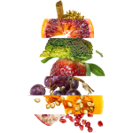 gemuese_obst_logo.png