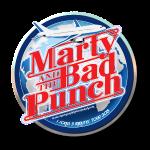 Logo - Tour 2015