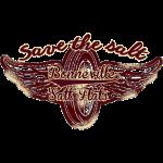 Bonneville_Save_the_salt
