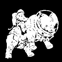 spacerhino white