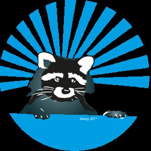 Waschbär-blau