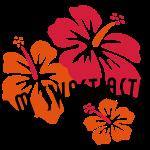 OM SWASTIASTU - Hibiscus
