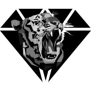 Tiger Hipster Design