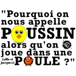 poussin.png