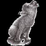 Junger heulender Wolf