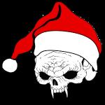pnlogo_joulu