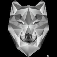 AD Grey Wolf