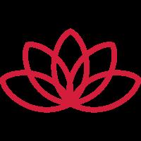 lotusblume yoga