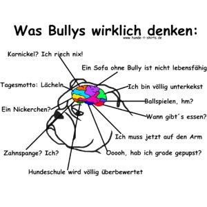 Bullytrans gif