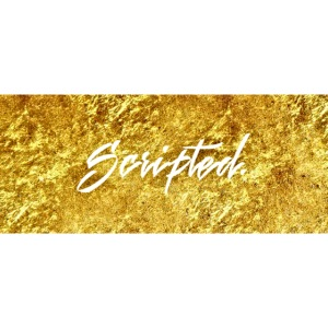 Scripted. Box Logo