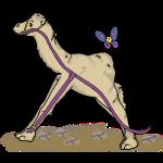 Lamda Camel