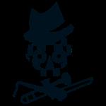Checkerd Skull
