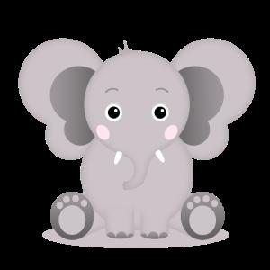 Baby Elefant Elias