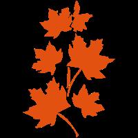 herbstlich, Blätter, Herbst