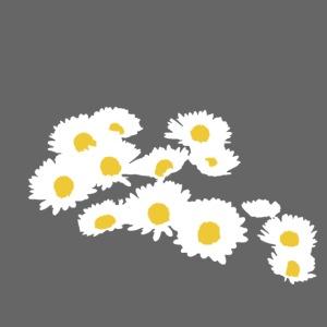 Spring Season Daisies