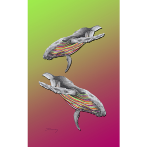 Buckelwale gruen pink /humpback whales green pink