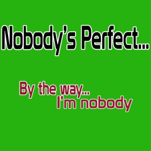 Nobody's perfect BTW I'm nobody shirt