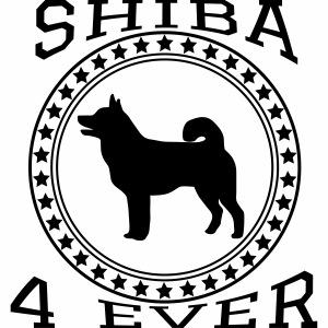 Shiba Inu College Star 2