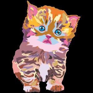 wpap kitten