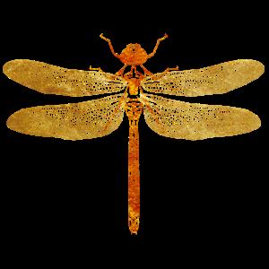 Libelle Gold