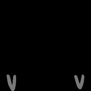GiftGuru