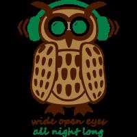 Eule Kopfhörer Owl Headphones eyes all night long