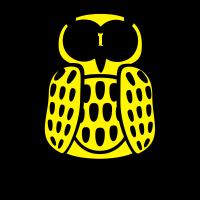 coole Eule Kopfhörer Owl Headphones all night long