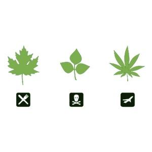 weed png