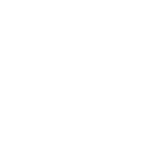 PK_FEL.png