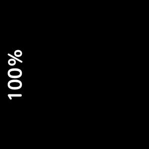 100% Indie developer