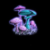 Mushrooms (Purple-Blue Mix)