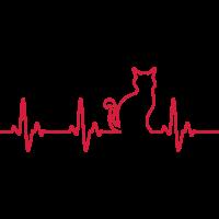 Ein Herz für Katzen