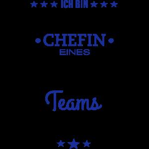 Ungeheuer fantastisches Team / Chefin Edition