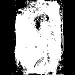 Scancopyshirt