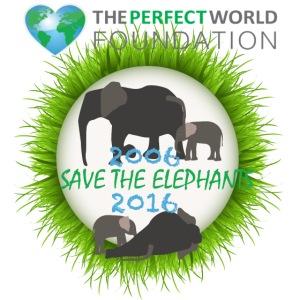 Save the elephant - Erik