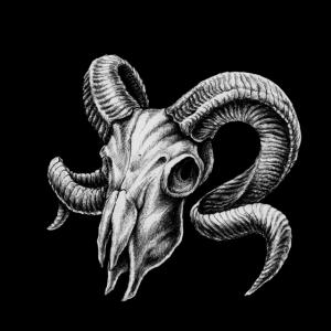 Sternzeichen Widder Skull - RAHMENLOS Geburtstags Star Symbol Gift Geschenk