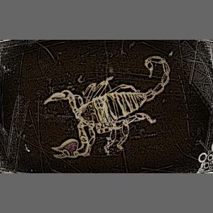 skorpion_grafika-jpg