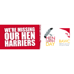 BAWC Hen Harrier Day c