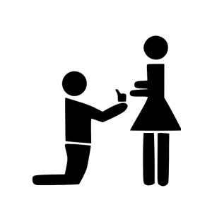 heiratsantrag hochzeit d7