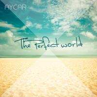 Die Perfekte Welt CD Cover