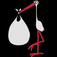 Storch (2) - Schwangerschaft