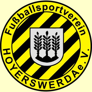 fsv logo