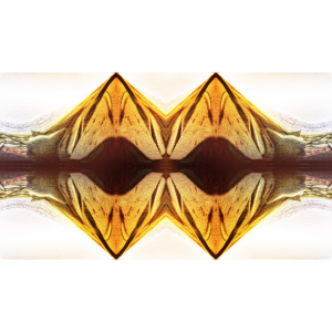 yellow design