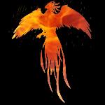 Phoenix feu.png