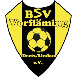 bsv logo png