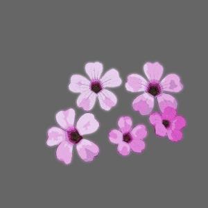 Blumen violett