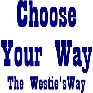 Choose Your Way Navy