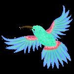 Kolibri mint blau